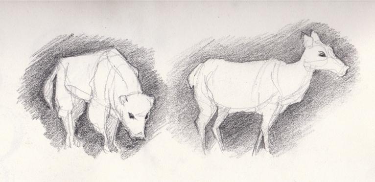 Life-Drawing 017